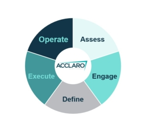 The Acclaro Social Value wheel
